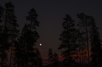 2013-12-Nature