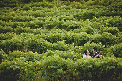 Natalia + Han | Running Hare Winery