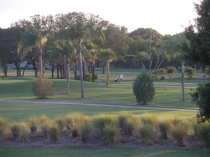 Golfer on 17th fairway - view from Florida Room