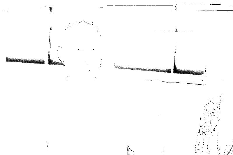 DSC09001.png