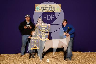Washington County Jr. Livestock Show