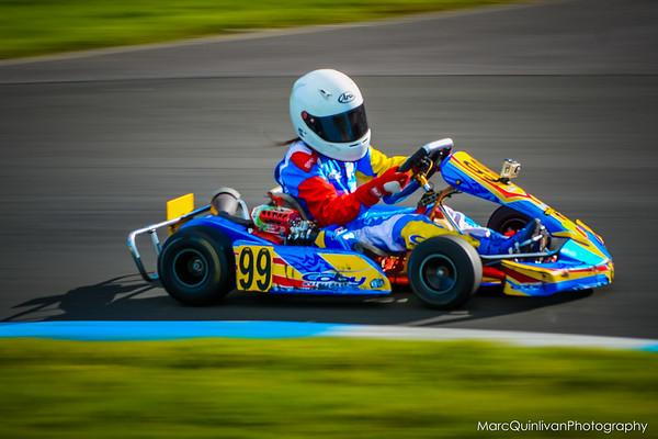 Irish Karting Club - C Plate 2014 - Alyx Coby