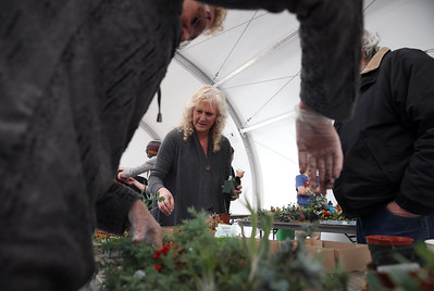 Holiday floral decoration workshop at Conservatory of Flowers