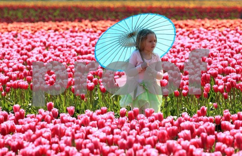 Girl umbrella 3606c.jpg