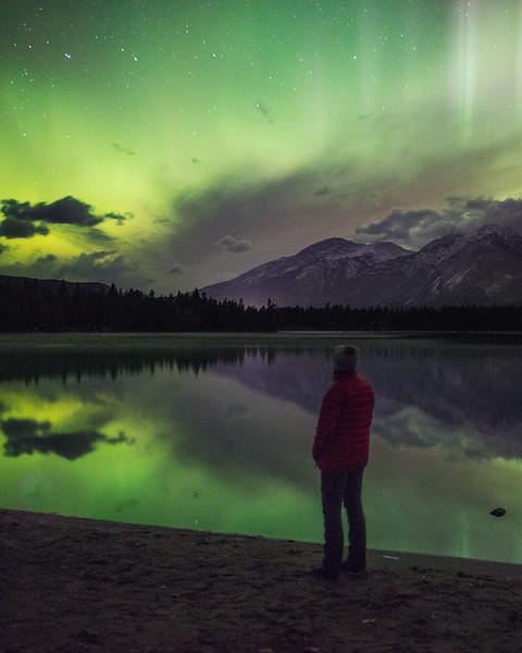 Jasper-Stargazer.jpg