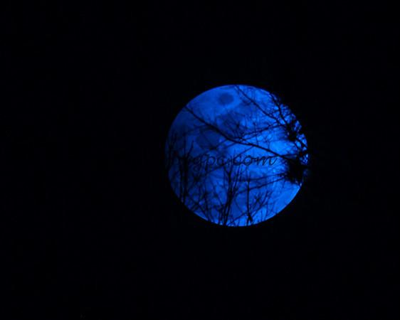 Moon 2017-02-10