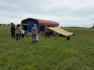 Visit to Sam, Carolynn,  Ellie, and Django's Shirttail Creek Farm