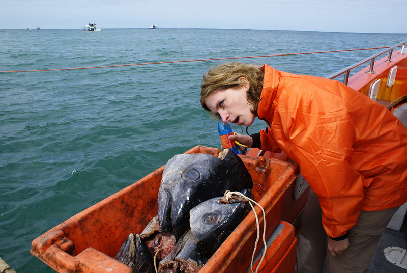 Mocking dead fish or seasick?  You decide.