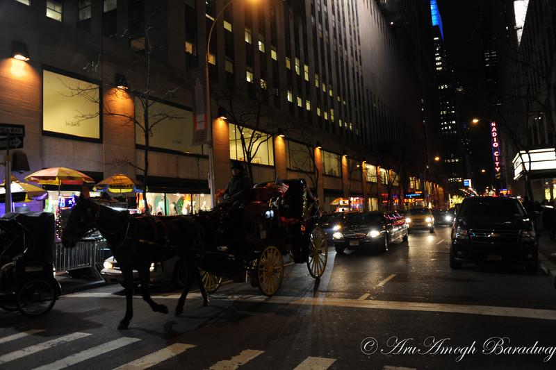 2012-12-22_XmasVacation@NewYorkCityNY_015.jpg