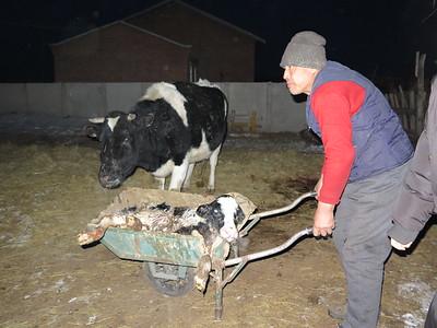 Inner mongolia Grassland Winter Nadam Fair (a Mongolian traditional fair)