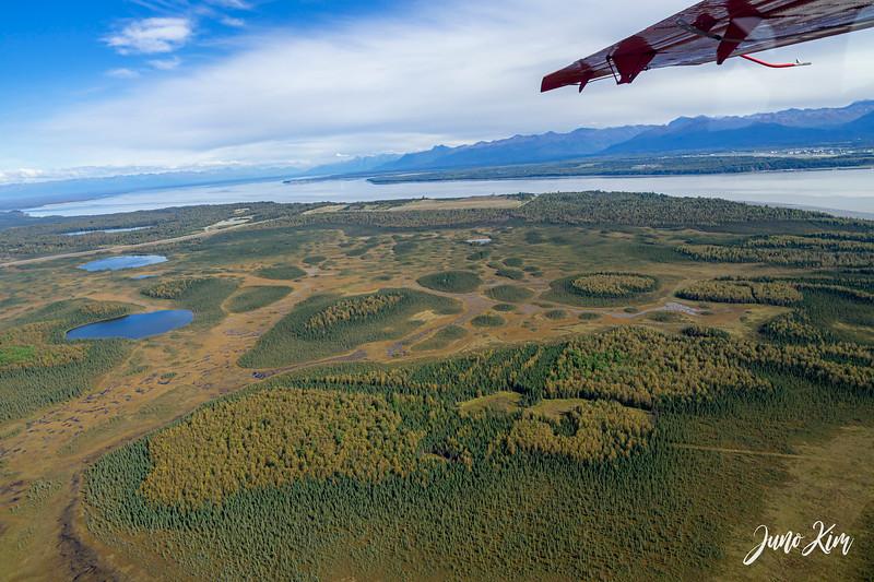 Rust's_Beluga Lake__DSC8831-2-Juno Kim.jpg