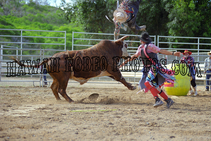 SUPERBULL SHOWDOWN