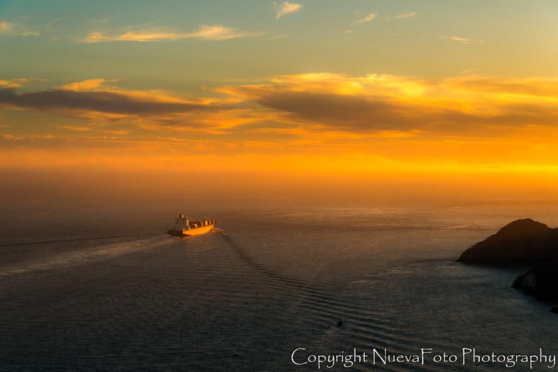 Muir Woods and Golden Gate