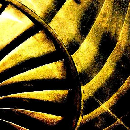 DSC05460 Crop Gold.jpg