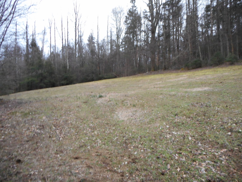 Deer Browse field, home for Saturday night