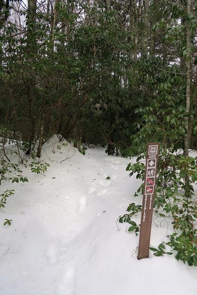 Greenland Creek-Mac's Gap Trail Junction