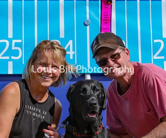 Black Labrador DSR2
