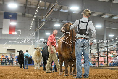 2019 Fort Bend County Fair