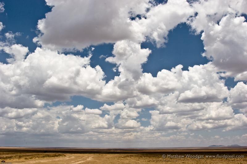 Boundless - Serengeti
