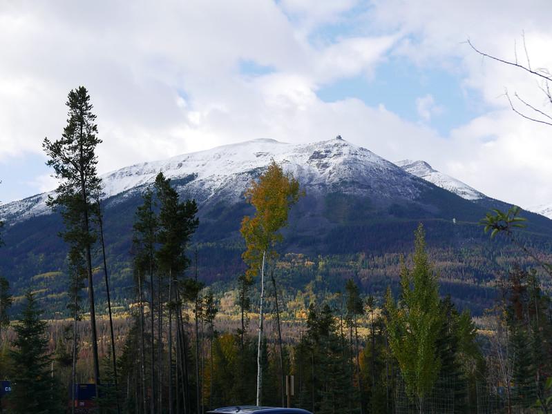 Views While Walking Along Connaught Drive