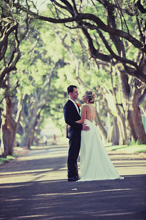 Wedding Collections by Brandi Hill