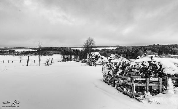 Ardenne et neige