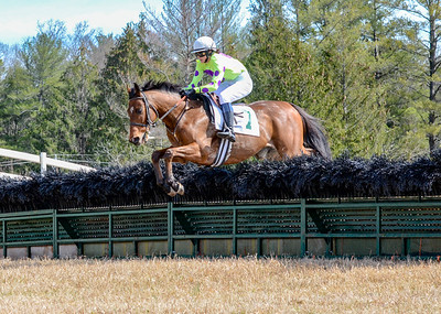 2020 Warrenton Hunt Point to Point