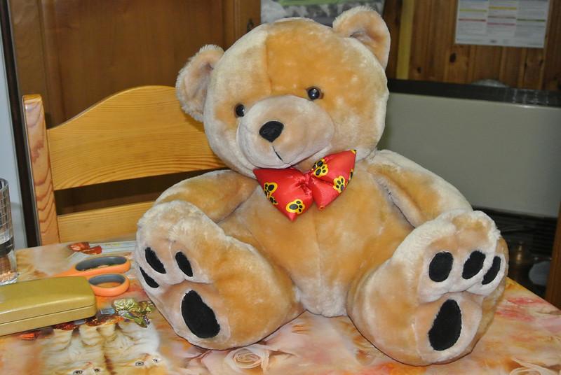 Bear 'Graham' 01.JPG