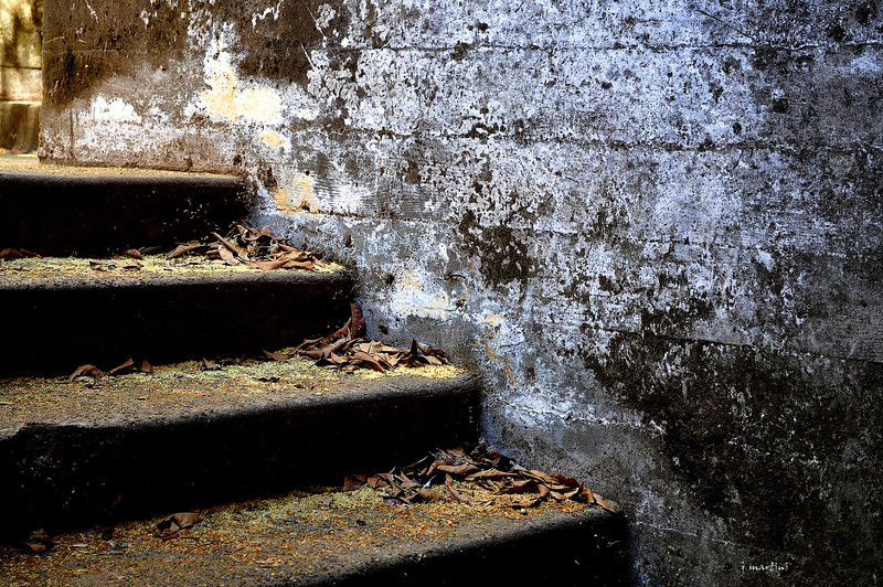 stairway to middle earth 8-14-2012.jpg