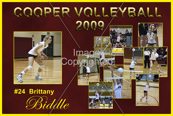 Cooper Volleyball Posters