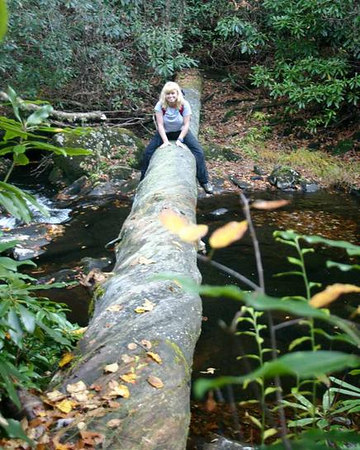 Scooting across the river on a fallen log. And getting stupider each second