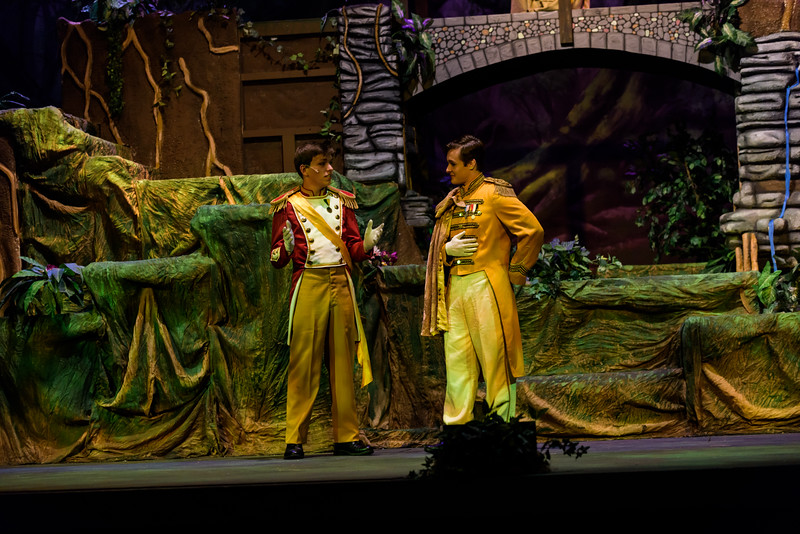 20150423 Into the Woods8860.jpg
