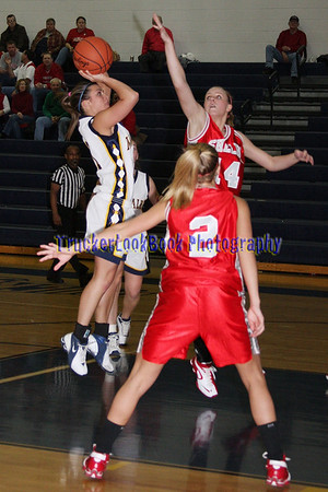 2008 Girls Basketball / Shelby