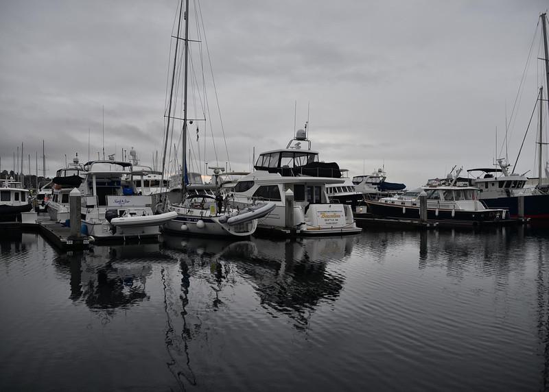 NEA_2682-7x5-Dock.jpg