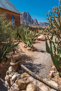 Desert cacti in a roped in courtyard