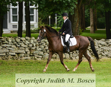 Beginner Novice  Jr. Dressage