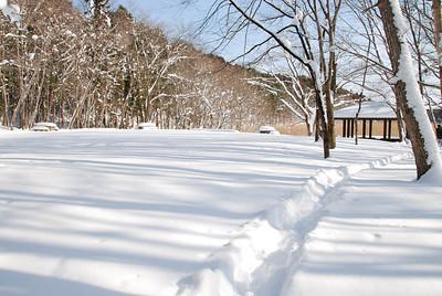 Oonuma-winter