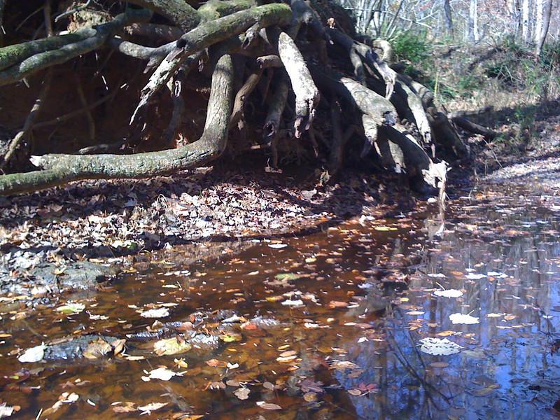 Waxhaw Creek