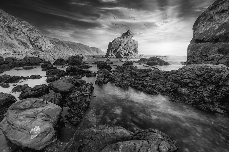 Pukerua Bay, black and white