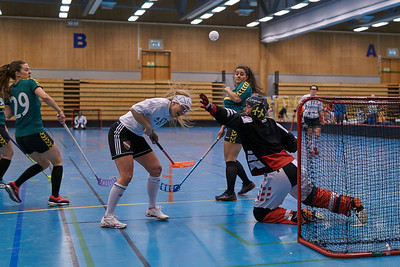 Dragvoll Cup 2019