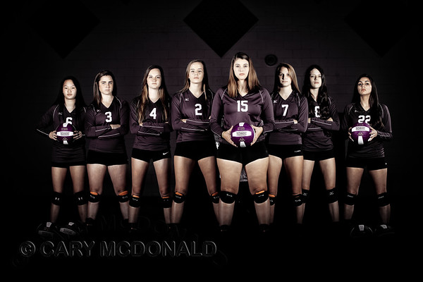 2017 - Varsity Volleyball team