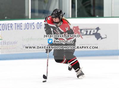 1/24/2018 - Girls varsity Hockey - Wellesley vs Needham