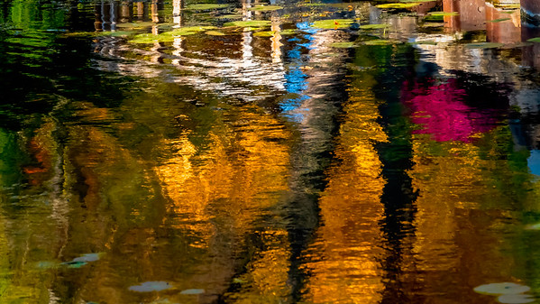 Fall seen reflected
