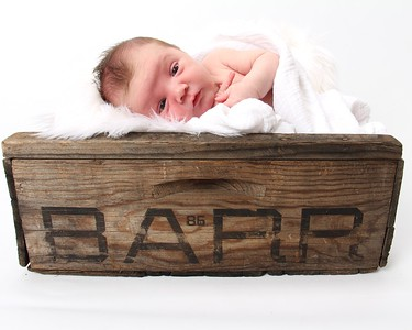 Kirkwood Barr, Newborn Session Buy Buy Baby