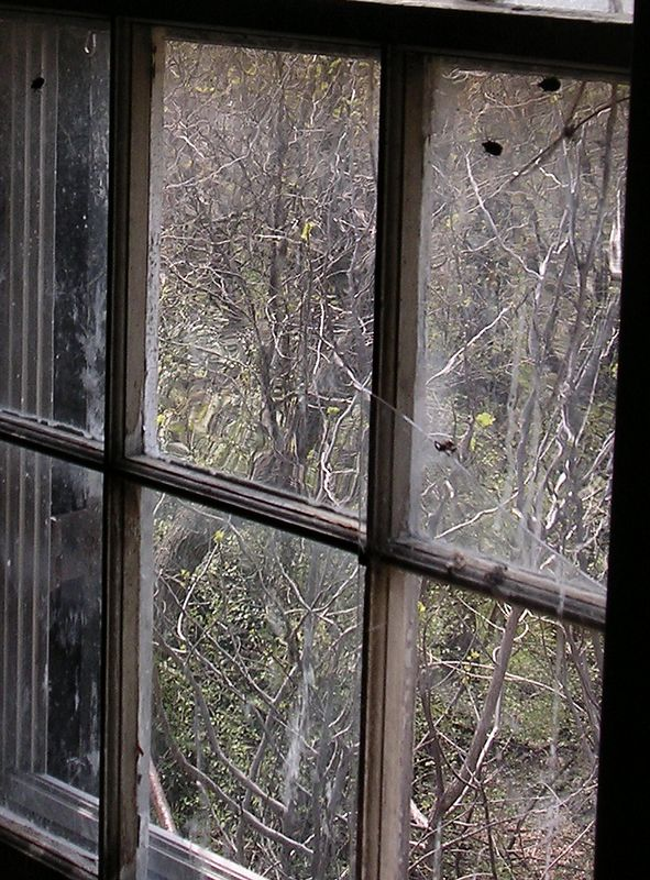 Some of the panes in the window in the music room are still the wavy old glass.