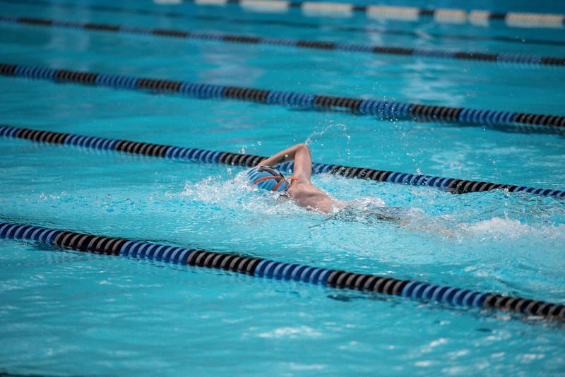 lcs_swimming_kevkramerphoto-1013.jpg