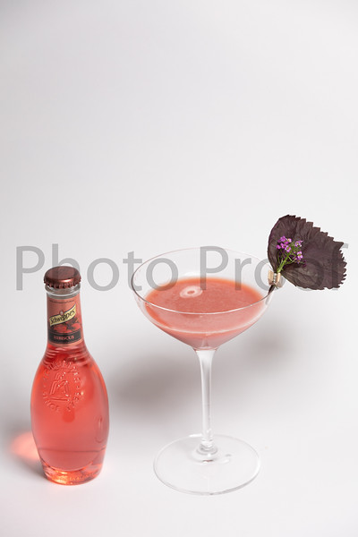 BIRDSONG Schweppes Cocktails 190.jpg