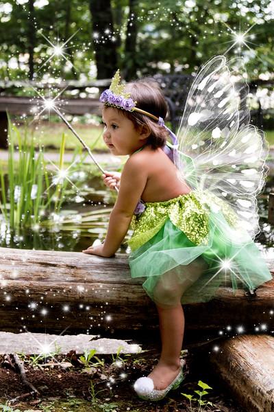 795A1866 fairy.jpg