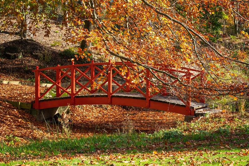 Himalayan Garden Oct 18-19.jpg