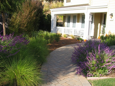 Peacock Gap Luxury Home Water-wise & Aesthetic Improvements